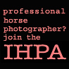 international horse photographers association